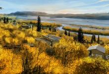 Alaska Treehouse-Resort